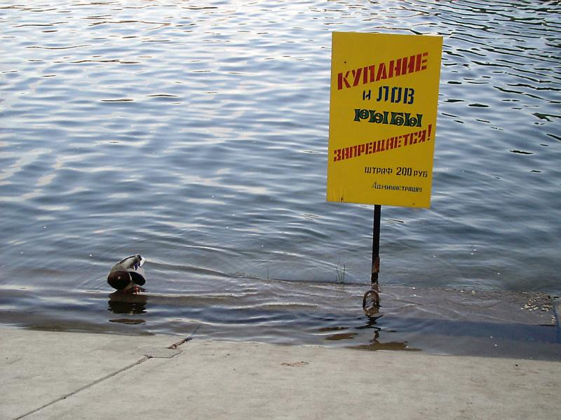 есть ли запрет на ловлю рыбы в краснодарском крае